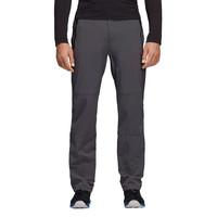 adidas Terrex Multi Pants - AW18
