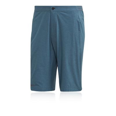 adidas Terrex Liteflex Shorts - AW20