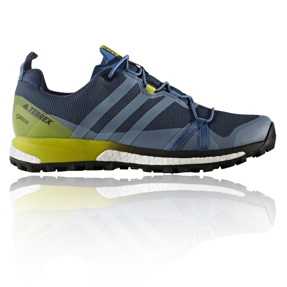 Adidas Terrex Agravic GTX scarpe da trail corsa