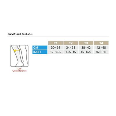 Compressport R2 v2 Calf Sleeves - AW19