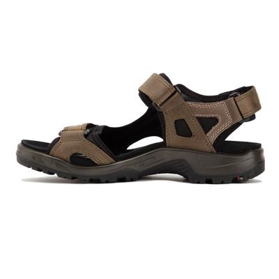 Ecco Offroad Walking Sandals - SS21