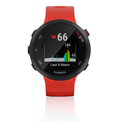 Garmin Forerunner 45 GPS Watch - AW20