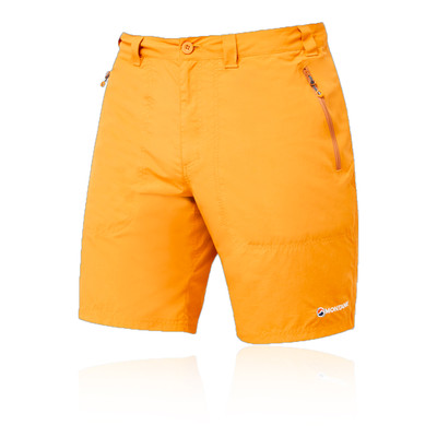 Montane Terra pantaloncini - SS21