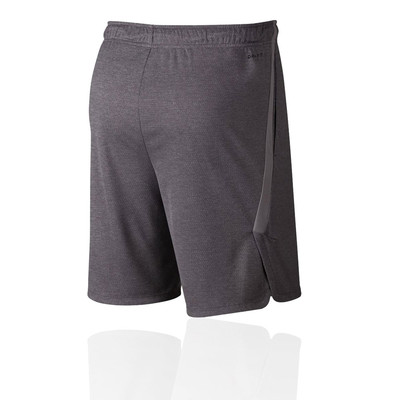 Nike Dry Training Shorts - FA19