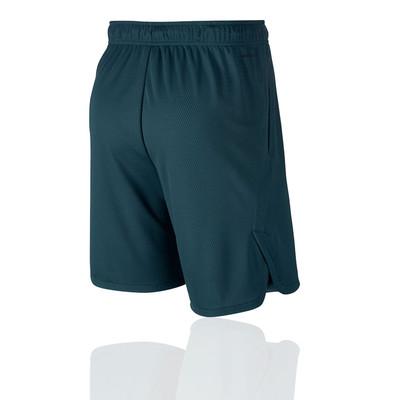 Nike Dry Training Shorts - SU19