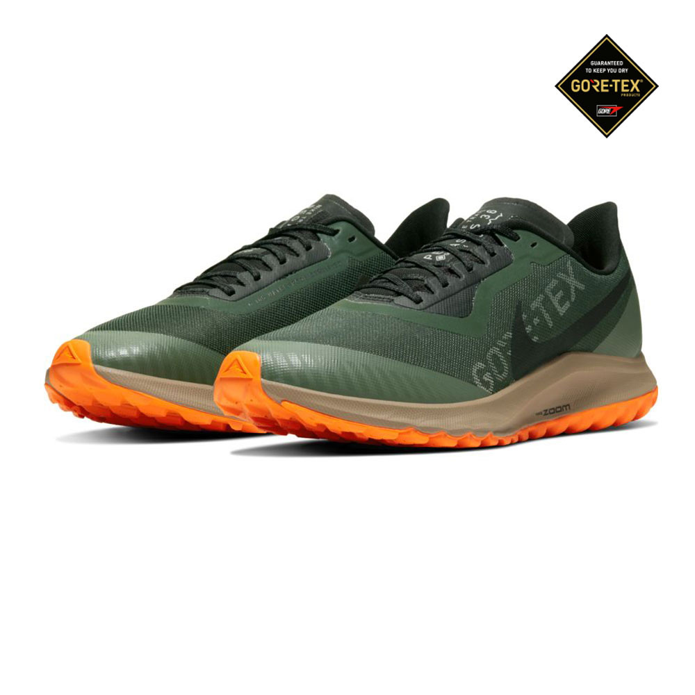 Nike Zoom Pegasus 36 GORE-TEX trail zapatillas de running  - HO19