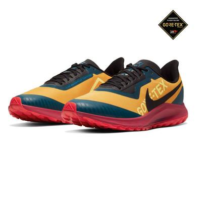 Nike Zoom Pegasus 36 GORE-TEX trail zapatillas de running  - HO19