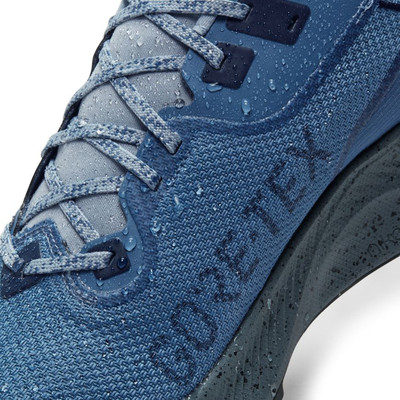 Nike Pegasus Trail 2 GORE-TEX scarpe da trail running - HO20