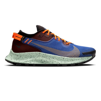 Nike Pegasus trail 2 GORE-TEX chaussures de trail - HO20