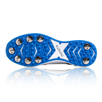 Payntr V Junior Cricket Spikes - SS20