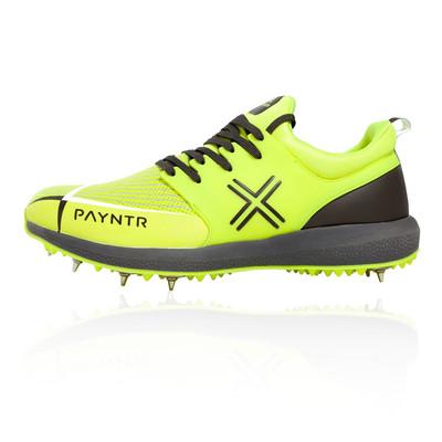 Payntr T20 Rebel Cricket Spike