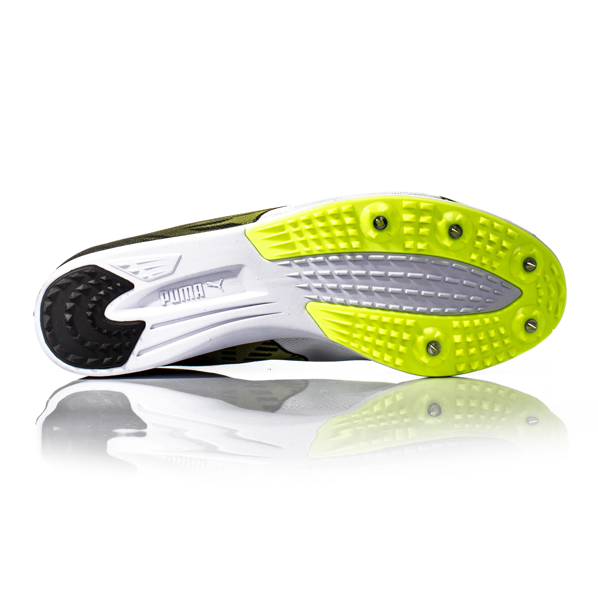Mens Evospeed Distance 7 Track and Field Shoes Puma Shop Offer Sale Online rpu0bpU
