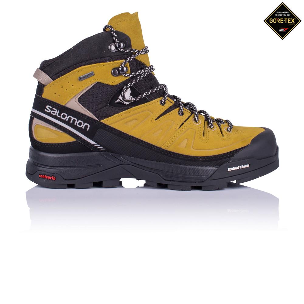 Kaufen Salomon X Alp Mid LTR Gore Tex® Trekking Leder