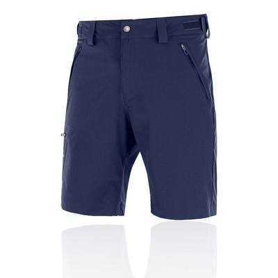 Salomon Wayfarer Shorts - SS20