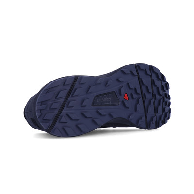 Salomon Sense Ride 2 Trail Running Shoes - AW19